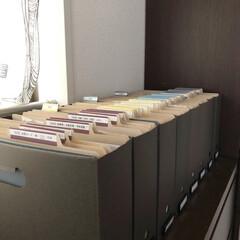 書類収納/書類ケース/書類/書類整理/バーチカルファイリング/ホームファイリング/... 我が家のバーチカルファイリング  すべて…