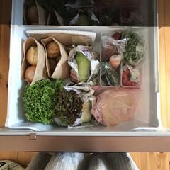 冷蔵庫掃除/冷蔵庫整理/冷蔵庫収納/冷蔵庫/おうちごはん/暮らし/... お肉とお魚以外は週に一度の買い物。  週…
