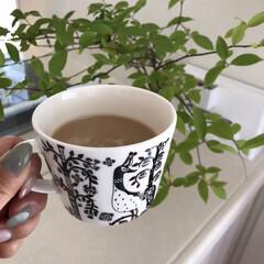 お家カフェ/珈琲タイム/コーヒータイム/お気に入り/ittara/イッタラ/... 好きなカップで飲むだけで インスタントの…