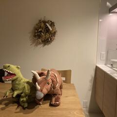 兄弟/男の子ママ/子どものいる暮らし/恐竜/ぬいぐるみ/IKEA 久しぶりにIKEAに行くと恐竜だらけにな…