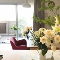 てっぽうゆり/ドウダンツツジ/花のある暮らし/インテリア/雑貨/暮らし キッチンに生花があると元気をもらえる。 …