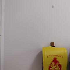 壁につけられる家具/新一年生/ランドセル収納/子どものいる暮らし/暮らし/無印良品 ランドセル収納にフックをプラス。 これで…
