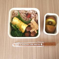 シービージャパン/フードマン専用箸 ウッドブラウン | CBジャパン(箸)を使ったクチコミ「高校生/お弁当 2020/07/16  …」