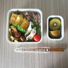 シービージャパン/フードマン専用箸 ウッドブラウン | CBジャパン(箸)を使ったクチコミ「高校生/お弁当 2020-07-09  …」