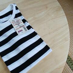購入品紹介/高校生/ボーダートップス/半袖/半袖Tシャツ/オーガニックコットン/... ◤無印良品◢  久々の無印良品でお買い…