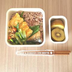 シービージャパン/フードマン専用箸 ウッドブラウン | CBジャパン(箸)を使ったクチコミ「高校生/お弁当 2020-07-06  …」