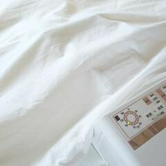 象印 布団乾燥機 スマートドライ ホワイト RF-AC20-WA   象印(布団乾燥機)を使ったクチコミ「( 'ω'o[ 布団乾燥機 ]o  寝て…」