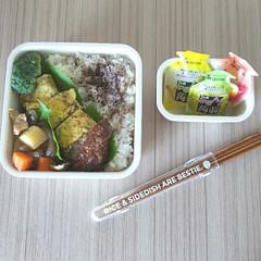 シービージャパン/フードマン専用箸 ウッドブラウン | CBジャパン(箸)を使ったクチコミ「高校生/お弁当 2020-06-23  …」