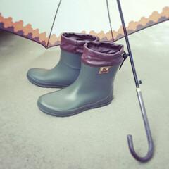 団地/梅雨を楽しむ/梅雨/暮らしのひとこま/暮らしを楽しむ/暮らし/... 今日も雨 ☂ 新しい長靴を履いて 憂鬱な…