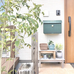玄関ポーチ/玄関インテリア/玄関/100均インテリア/造花/DAISO/... 我が家の玄関です✨ ポストの下の植物はダ…
