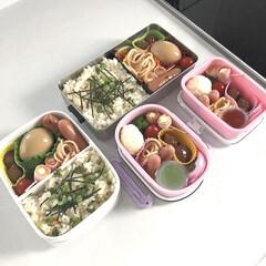 ピクニック弁当/ピクニック/鯛めし/お弁当のおかず/お弁当/簡単 今日はピクニックなので4人分のお弁当🍱 …