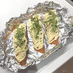 料理/簡単ごはん/夜ご飯/鮭/魚料理/鮭のホイル焼き/... 鮭のホイル焼き🐟 マヨネーズとネギを乗せ…
