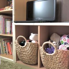 カラーボックス/バスケット/子供部屋/おもちゃ収納/おもちゃ/ニトリ/... 我が家のぬいぐるみ収納🧸✨ ニトリのバス…
