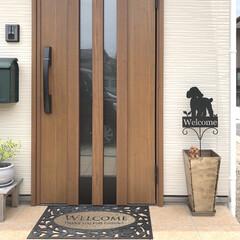 ウェルカム/トイプードル/マイホーム/ウェルカムスタンド/玄関ポーチ/玄関インテリア/... 玄関にウェルカムスタンドを設置✨ よく見…