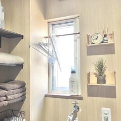 インテリア/ウォールシェルフ/Seria/セリア/マイホーム/洗面所/... 洗面室のインテリア🎶 セリアのウォールシ…