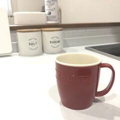 モーニング/朝/コーヒータイム/コーヒー/4連休/おしゃれ 朝のコーヒータイム☕️ 今日は雨がひどい…