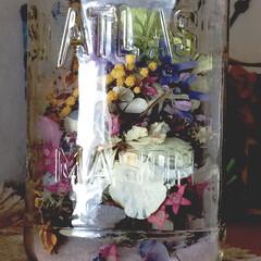 お花が好き/癒し/ビンに詰めて/庭で咲いた花達/ドライフラワー/暮らし おウチで咲いた花達をドライにしてビンに詰…
