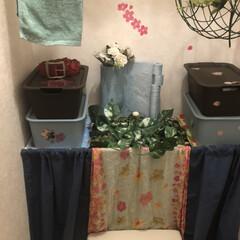 トイレタンク隠し/トイレリメイク/100均/セリア/ソープディッシュ/メイクルーム/... ホントは、スノコで、棚を作るはずでしたが…