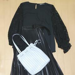 プリーツバッグ/プチプラファッション/プチプラコーデ/ZARA/おしゃれ/お家でもオシャレ ZARA購入品  プリーツバッグ、ベージ…(1枚目)