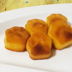 おやつ/にくきゅうマドレーヌ/ねこねこチーズケーキ/ねこねこ食パン/おうちカフェ にくきゅうマドレーヌ。  ねこねこ食パン…(1枚目)