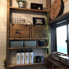 洗面所DIY/100均/ダイソー/セリア 洗面所棚をディアウォールでDIY 木材以…