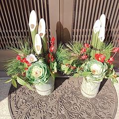 門松/カーネーション/観葉植物/多肉植物 お正月の準備を少しづつしてます🎍🎴 門松…