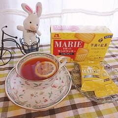 レモン汁/りんごバター/レモンヨーグルトゼリー レモン尽くし🍋💛 レモンを作ってる近所の…(4枚目)