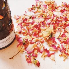 手作り/ポプリ/香り/おしゃれ/季節インテリア 庭に咲いたバラの花びらで香りを楽しむ♡ …