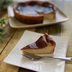 チーズケーキ/手づくりケーキ/ヨーグルトケーキ/手づくりおやつ クックパッドプラスを見ながら娘が焼いてく…