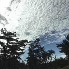海岸沿い/雲/空 今日の仕事中に撮った空 雲がモコモコ☁️