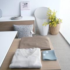 中間色/ファッション/おしゃれ/建築/建築家/インテリア ニュートラル カラー