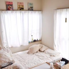 新居/100均/無印良品/ダイソー 新居に引っ越しました*