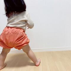 簡単子ども服/ギンガムチェック/手作りベビー服/手作り子供服/かぼちゃパンツ/ハンドメイド