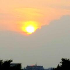 夕陽 🌴☀️SUMMER🍧🌴  こんばんは(*…