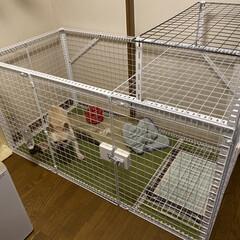 ビバホーム/フレブル/ケージ/DIY/犬 犬用ケージ作成 材料はスーパービバホーム