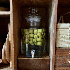 BEVERAGE DISPENSER ビバレッジ ディスペンサー ダルトン M111-36 | DULTON(その他キッチン、台所用品)を使ったクチコミ「 実家の梅の木から収穫して、 梅シロップ…」(2枚目)