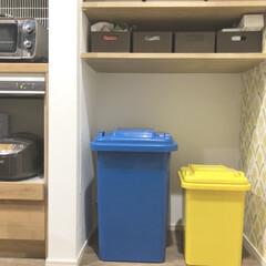 ゴミ箱/うちのゴミ箱/ダルトン/DULTON/お洒落ゴミ箱 ダルトンのサイズ違いのゴミ箱を用途別に使…