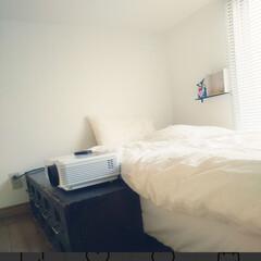 暮らしを楽しむ/おうち時間/すっきり暮らす/シンプルライフ/シンプルな暮らし/ロフトスペース/... 我が家は53平米で3人暮らしと小さな部屋…(2枚目)