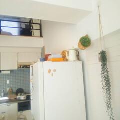 暮らしを楽しむ/おうち時間/すっきり暮らす/シンプルライフ/シンプルな暮らし/ロフトスペース/... 我が家は53平米で3人暮らしと小さな部屋…