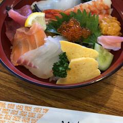 舞鶴港とれとれセンター/京都舞鶴 特選海鮮丼  美味しいかった😋💕