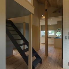 鉄骨階段/階段 既存の柱と新しい柱の森に囲まれるようにロ…