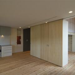杉フローリング/床暖房/ロフト 手前はLDKで、間仕切り兼収納を挟んで奥…