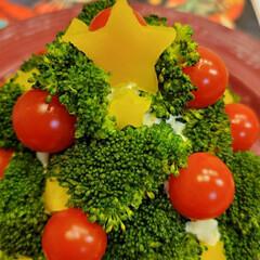 クリスマス/クリスマスツリー/ポテトサラダ/ブロッコリー/ミニトマト/パプリカ 我が家の定番❗ポテトサラダのツリー🎄 飾…
