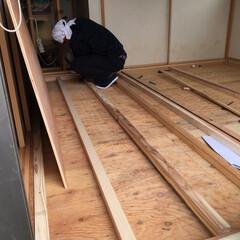洋室/部屋全体/和室/DIY/リノベーション 去年の5月20日、和室4畳半ををリノベー…