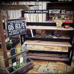 庭作り/小さな庭/庭/garden/gardening/インテリア/... 最近のお買い物❤︎