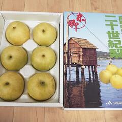 梨 親戚から毎年送って頂く梨が先日届き、早速…