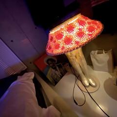 ルームライト/オシャレ/照明器具/一点モノ/ビンテージ/アンティーク/... 美脚ランプ 全て貝殻 引越しの時はこれだ…