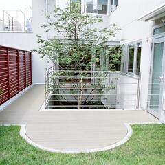 屋上緑化/回遊動線 1階の車庫の上を屋上緑化して2階レベルの…