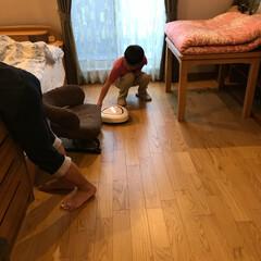 掃除 猫に飽きてロボット掃除機にエサをあげてる…