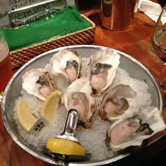 牡蠣 牡蠣が好き過ぎてあれ
